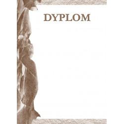 DYPLOMY SPORTOWE MEDAL...